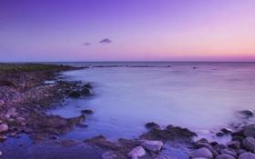 Картинка море, фиолетовый, вода, пейзаж, закат, природа, камни