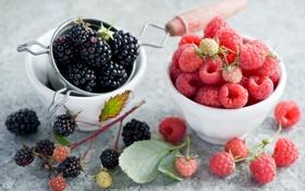 Обои ежевика, малина, ягоды