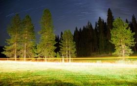 Картинка дорога, свет, деревья, пейзаж, ночь, огни