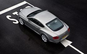 Обои серый, continental, Bentley