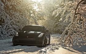 Обои Nissan GT-R, пейзаж, зима, черный.