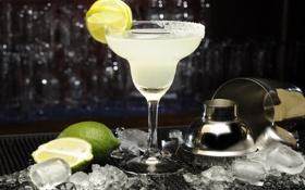 Обои лед, бар, коктейль, лайм