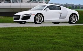 Картинка белый, трава, белая, фото машин, Audi тачки