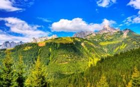 Обои небо, деревья, горы, облаа