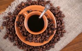 Обои кофе, зерна, ложка, кружка, блюдце