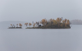 Обои деревья, туман, озеро, дом, лодка, островок, серое небо