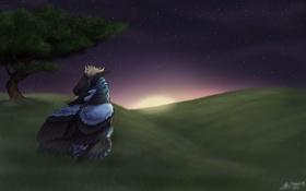 Обои звезды, ночь, Драконы, дерево