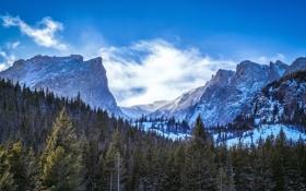 Обои зима, лес, горы, Rocky Mountain National Park