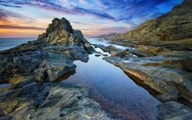 Обои пляж, водоросли, восход, океан, скалы, спокойствие, утро