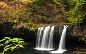 Обои Oregon, лес, осень, Upper Butte Creek Falls, водопад, США