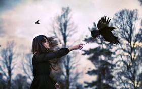 Картинка лес, девушка, птицы, природа, настроение