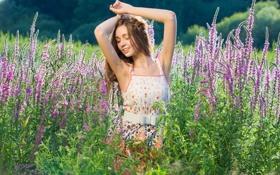 Картинка поле, лето, цветы, настроение, девочка