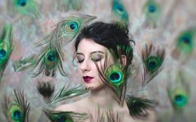 Картинка девушка, портрет, перья