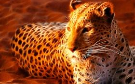 Обои пятна, огненный, песок, лежит, леопард