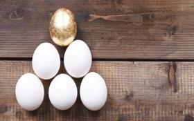 Обои Пасха, eggs, wood, Easter, яйца