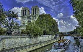 Обои деревья, река, Париж, Сена, собор, набережная, Нотр-Дам