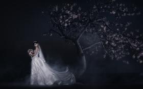 Картинка девушка, ночь, дерево