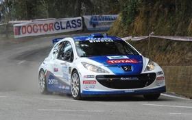 Картинка Спорт, Пежо, Капот, Peugeot, WRC, Rally, Передок