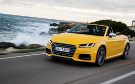Обои Audi, ауди, Roadster, 2014, TTS