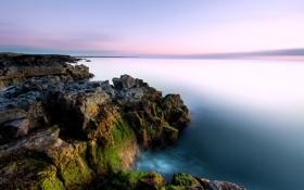 Обои закат, мох, скалы, берег, море