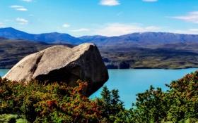 Обои река, берег, камень, кусты, Аргентина, Patagonia