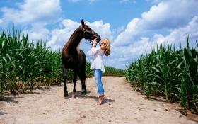 Картинка девушка, лошадь, блондинка