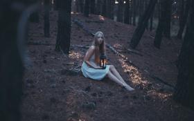 Картинка лес, девушка, свеча, фонарь