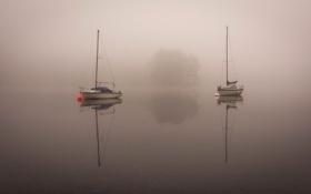 Картинка озеро, лодка, утро, яхта, ткмал