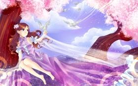 Обои небо, взгляд, дерево, волосы, аниме, платье, день. птицы