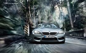 Картинка BMW, Скорость, Gran Coupe, Динамика