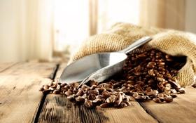 Обои мешок, кофейные зерна, лопатка