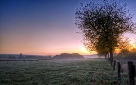 Картинка поле, пейзаж, закат, туман, забор