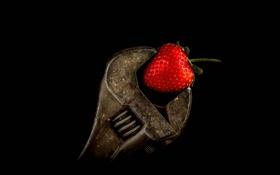 Обои ключ, клубника, ягода, сантехнический