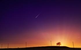 Обои звезда, Небо, падает