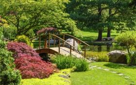 Обои камни, пруд, трава, лавочка, кусты, деревья, мостик