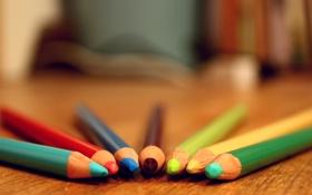 Обои Карандаши, pencil, table, разноцветные, стол, colors