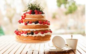 Обои еда, черника, торт, пирожное, фрукты, cake, крем