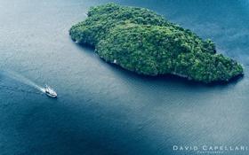 Картинка природа, океан, остров, яхта, залив, New Zealand