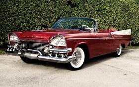 Картинка Dodge, кабриолет, додж, классика, супер, кусты, передок