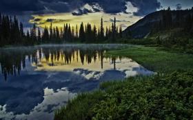 Картинка лес, трава, пейзаж, закат, природа, озеро