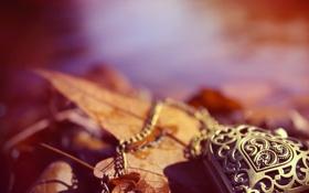 Картинка осень, листья, сердце, кулон, украшение