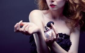 Обои model, clothing, perfume