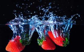 Обои клубника, вода, ягоды