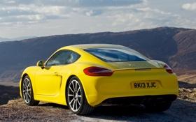 Картинка желтый, Porsche, порше, вид сзади, Cayman S, кайман