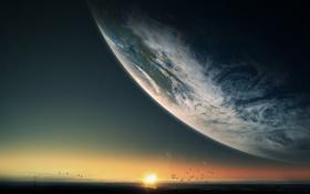 Обои закат, арт, планета, птицы, море