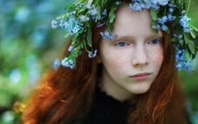 Обои цветы, портрет, девочка, венок
