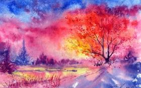 Картинка зима, деревья, закат, птицы, нарисованный пейзаж