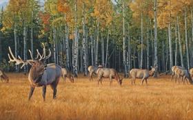 Обои осень, желтая трава, живопись, олени, стадо, осенний лес, Daniel Smith