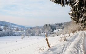 Обои зима, снег, дорога