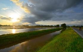 Обои закат, дорога, рисовые, поля, солнце